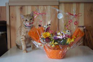 おみくんとお花